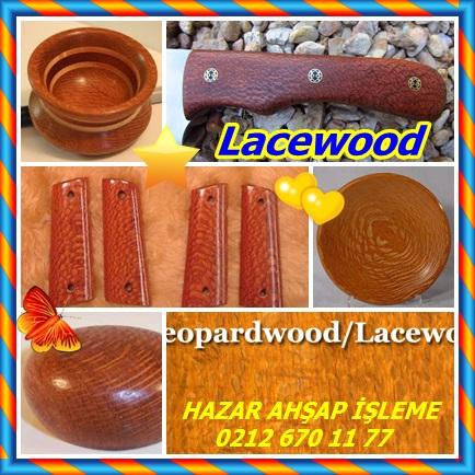 catsLacewood12