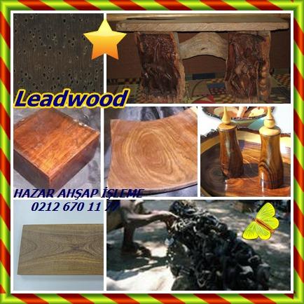 catsLeadwood57