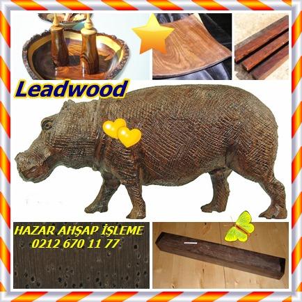 catsLeadwood854