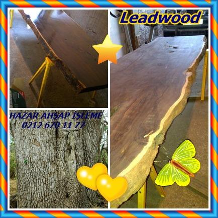 catsLeadwood87