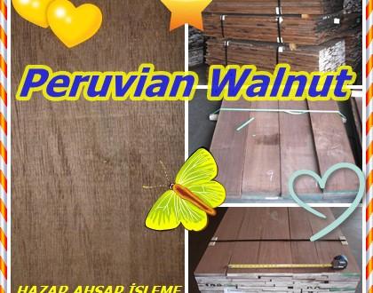 Peruvian Walnut,Peru Ceviz,Tropikal Ceviz,Nogal,(Juglans spp.),Juglans australis, Juglans Neotropica