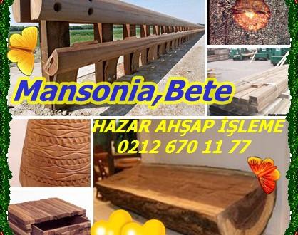 Mansonia,Mansonia altissima,Noce mansonia,Bete