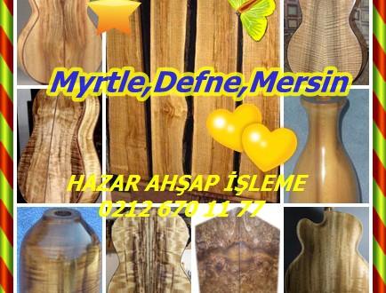 Myrtle,Oregon Myrtle,California Defne,Mersin,Pepperwood,Umbellularia califomica