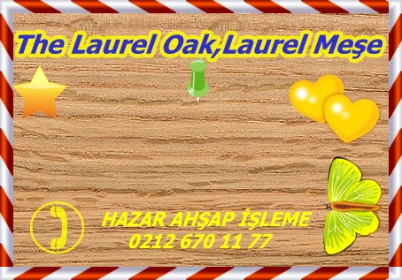 laurel-oak-sealed