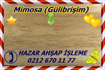 mimosa 1b s25 plh