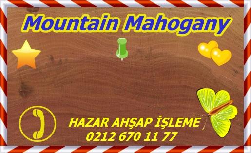 mountain-mahogany-endgrain