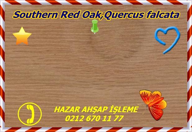 oak, red (southern) 1a s50 plh