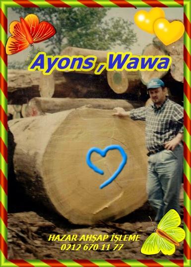 Ayons wawa(5)wwwssddf