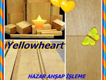 Yellowheart, Pau Amarello, (Euxylophora paraensis), Amarello, Limao-rana, Pau Setim, Pequia Setim, Lahuan (Şili).