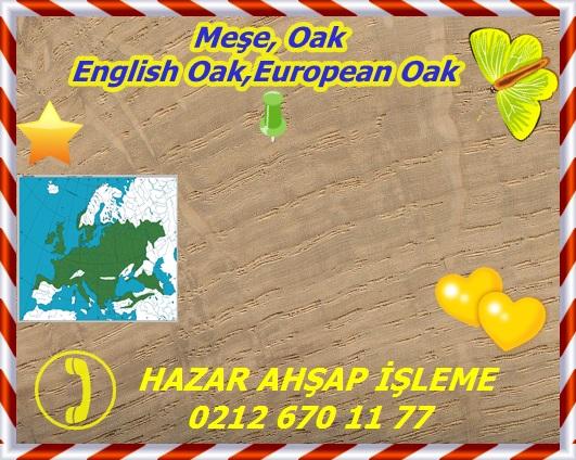 english-oak-s
