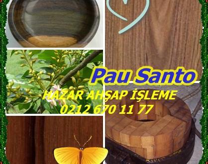 Pau Santo, Brezilya Blackheart, Zollernia spp.