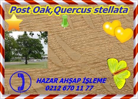 post-oak