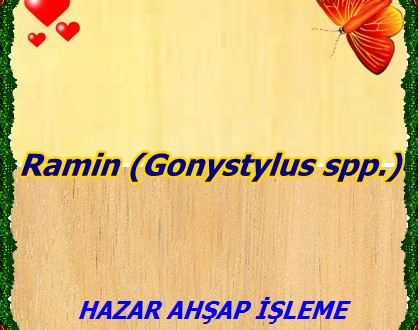 Ramin (Gonystylus spp.), Ahmin, Asana, Badiako, Busilak, Claro, Gaharu, Gaharu Buaya, Garu buaja,