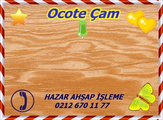 Ocote Çam