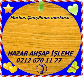 Pine-Merkus (1)
