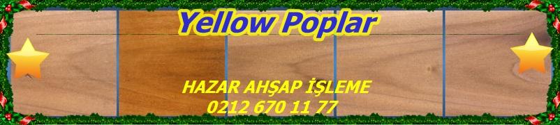 Poplar_Yellow_Lineup