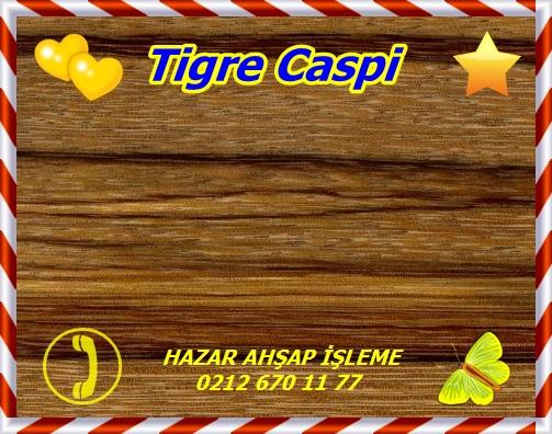 Tigre Caspi