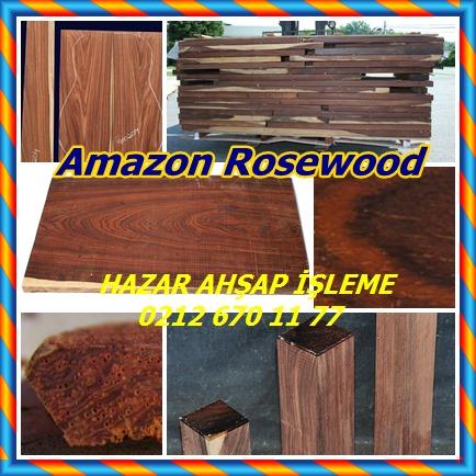 catsAmazon Rosewood1