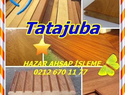 Tatajuba, (Bagassa guianensis),Amapa rana, Amarelo, Amarelao,kaw udu, Cow-wood, Garrote, Gele bagasse,