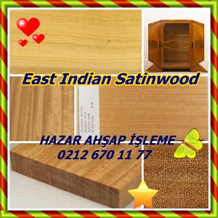 catsEast Indian Satinwood34