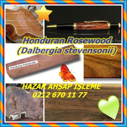 catsHonduran Rosewood(Dalbergia stevensonii)