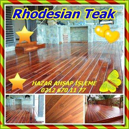 catsRhodesian Teak45