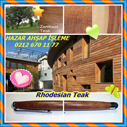 catsRhodesian Teak54