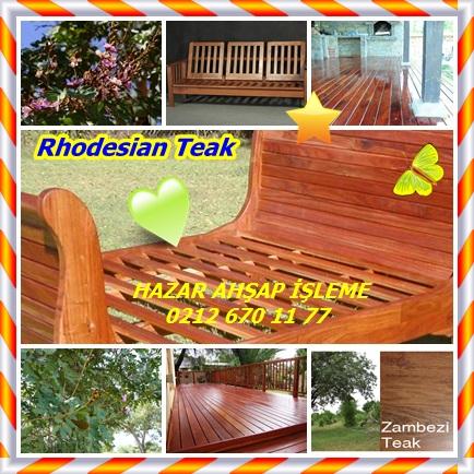 catsRhodesian Teak66