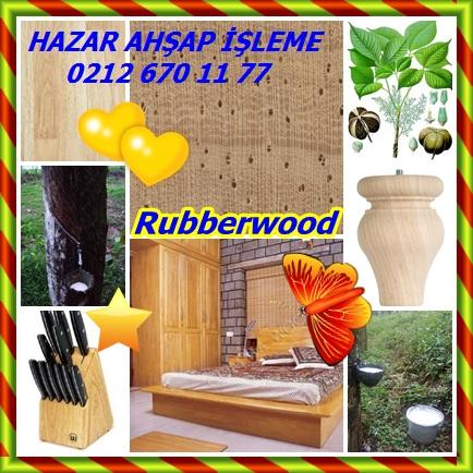 catsRubberwood6667