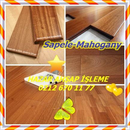 catsSapele-mahogany1