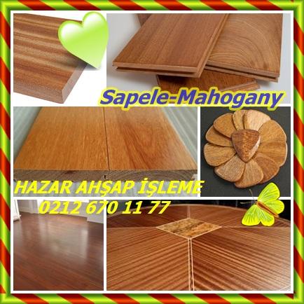 catsSapele-mahogany2