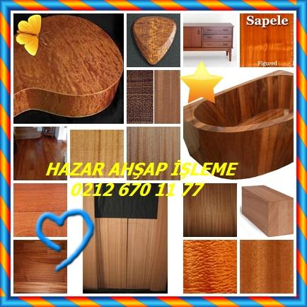 catsSapele-mahogany444