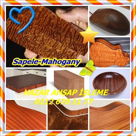 catsSapele-mahogany5