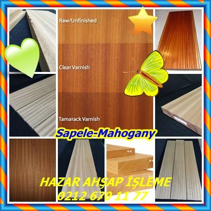 catsSapele-mahogany6
