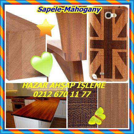 catsSapele-mahogany8