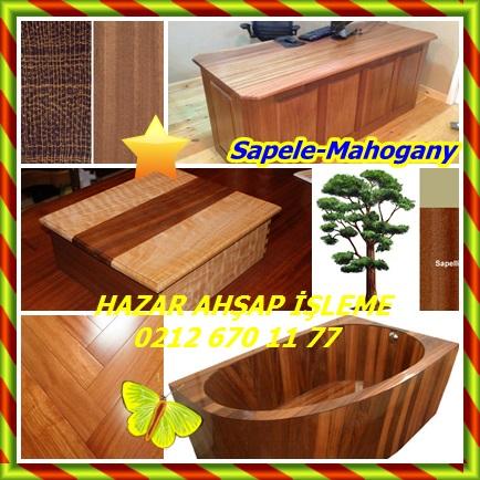 catsSapele-mahogany9876