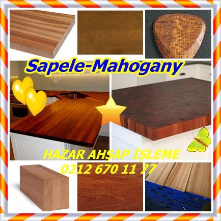 catsSapele-mahogany99