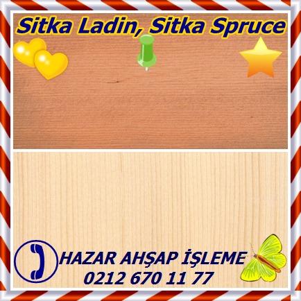 catsSitka Ladin, Sitka Spruce