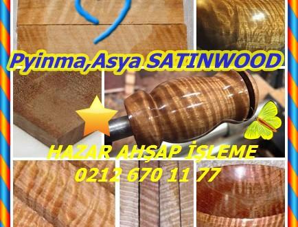 Pyinma,Asya SATINWOOD, Krep Myrtle,(Lagerstroemia spp.), Banglang,Bungor,Bang-lang,Jarul