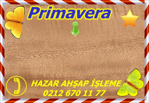 primavera-sealed-s