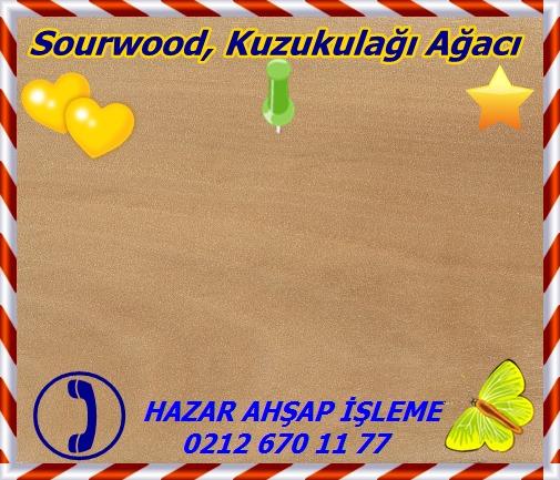 sourwoodSourwood, Kuzukulağı Ağacı
