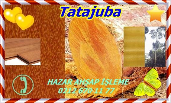 tatajuba123