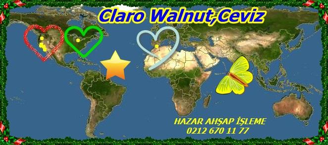 20mClaro Walnut,Ceviz