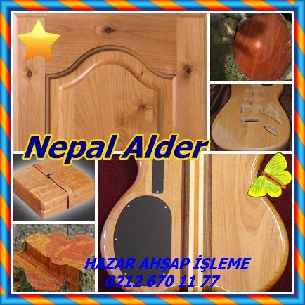 4444Nepal Alder