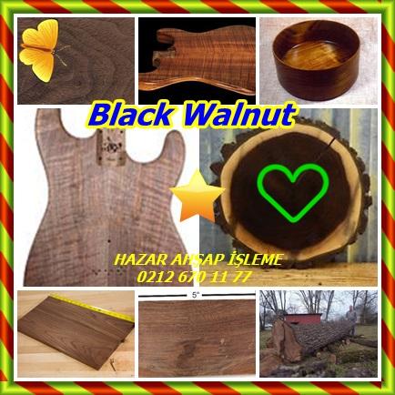 Black Walnut55