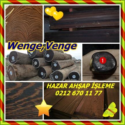 cats Wenge,Venge 44
