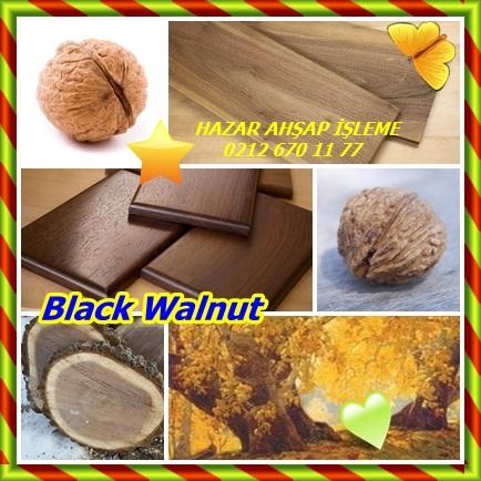 catsBlack Walnut21