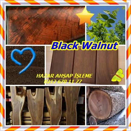 catsBlack Walnut32