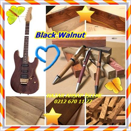 catsBlack Walnut4657