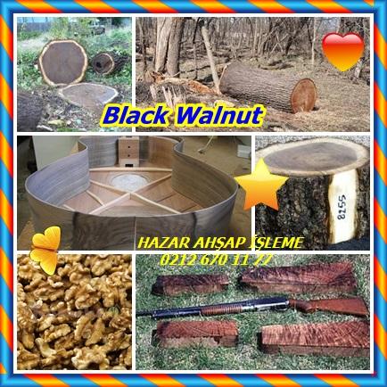catsBlack Walnut8989